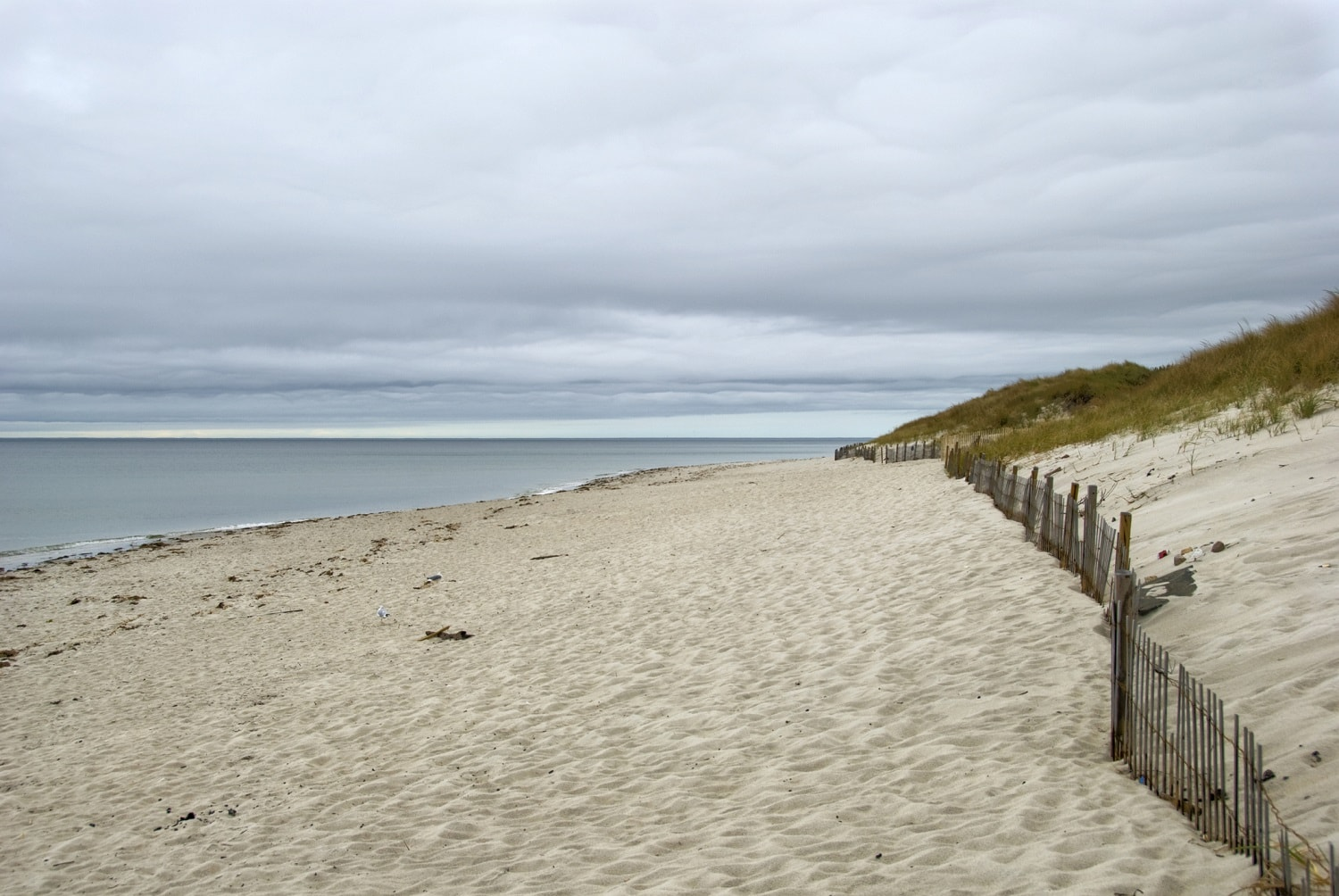 How To Experience The Kennedy Compound In Cape Cod