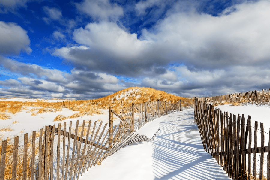 best winter things to do on cape cod