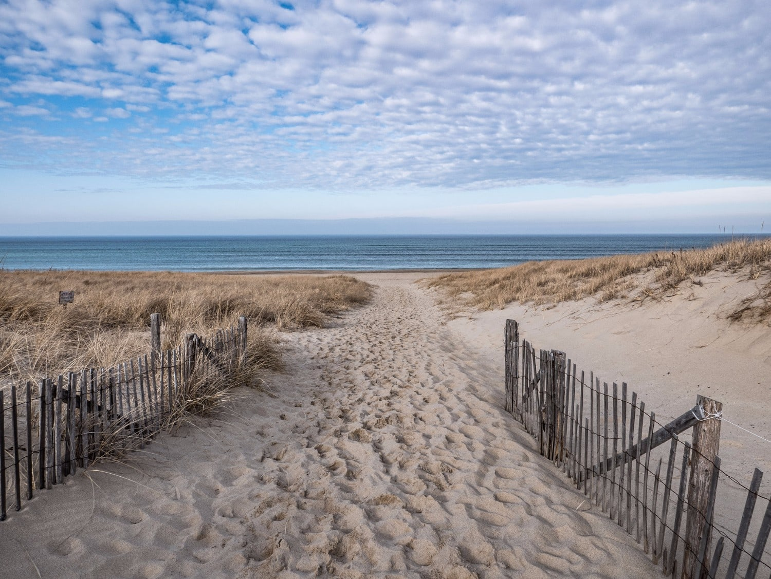 Everything You Need To Know About Cape Cod In January