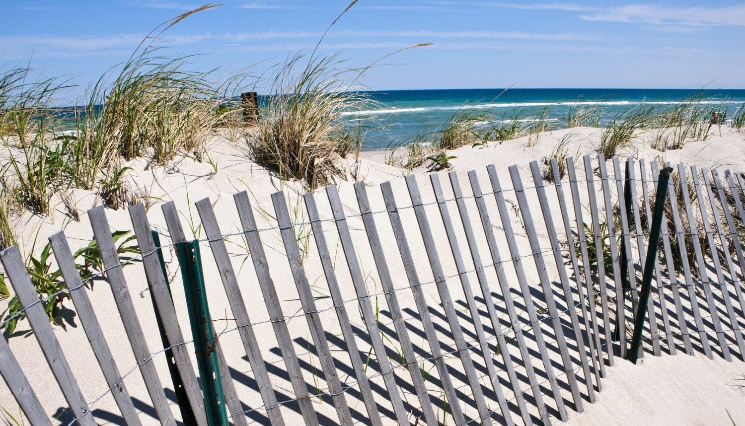 Here Are The Best Things To Do On Cape Cod In April