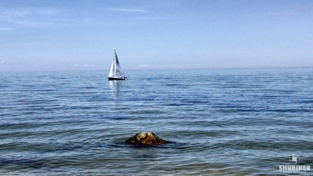 Sailboat on Bay in Brewster MA