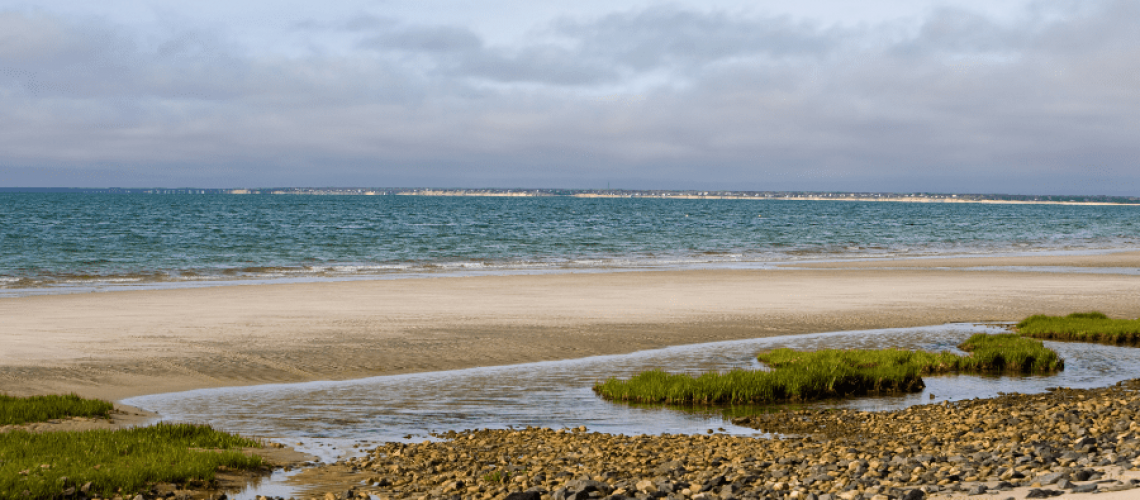 best things to do in Brewster MA on Cape Cod