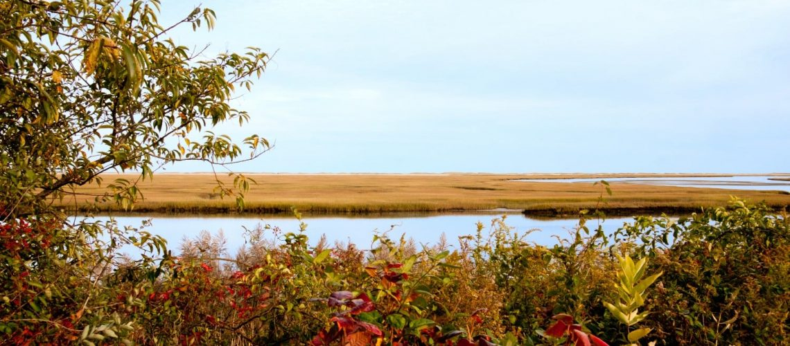 visiting cape cod in the fall