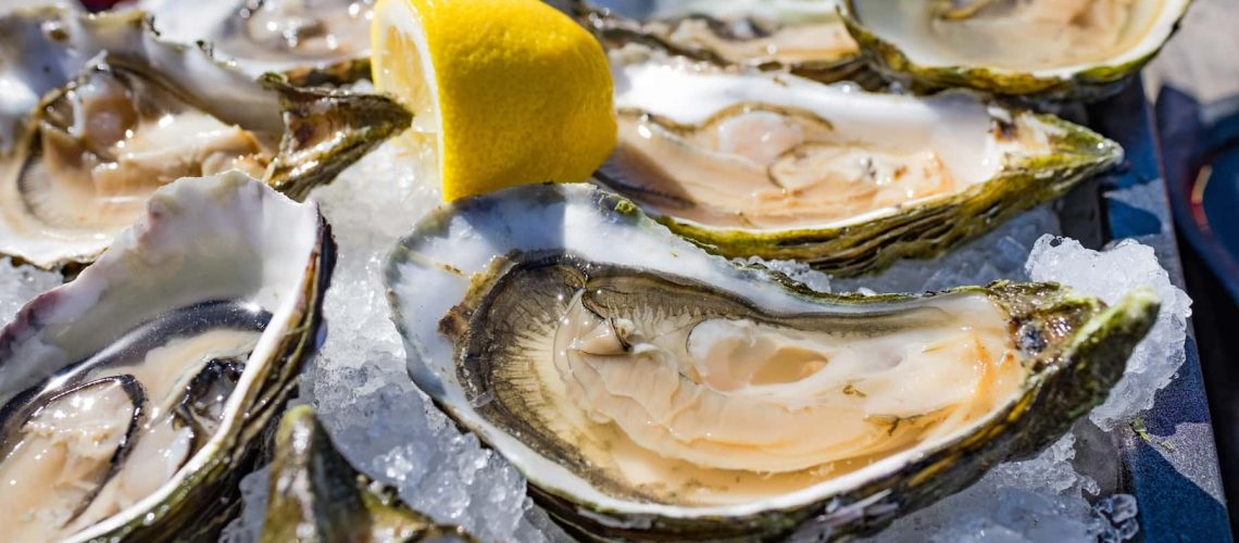 Half shell shucked oysters on a bed of ice - borderless